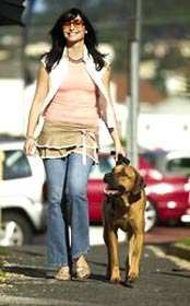 pet sitting, petsitter, dog walking, dogwalker, dog walker, pet sitter